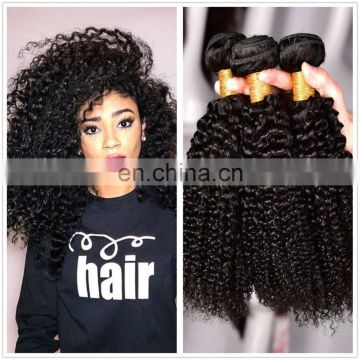 Best Selling Best quality virgin Brazilian Kinky Curly Hair virgin hair extension virgin brazilian hair weave