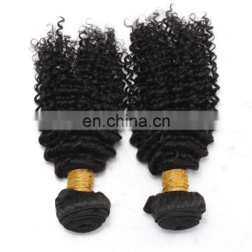 8A virgin hair kinky curly 100% natural original brazilian human hair for black women