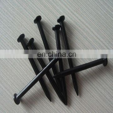 Factory Supplied High Quality Carton Steel Concrete Steel Nail