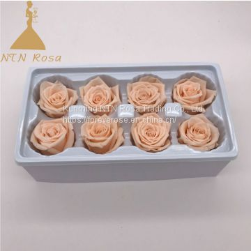 Top quality Decorative Flowers Preserved Roses 5-6cm rose head from Kunming