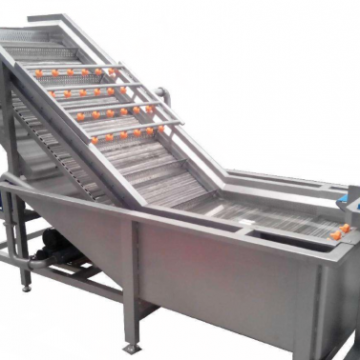 Large Volume Automatic Sprinkling Vegetable Cleaning Equipment