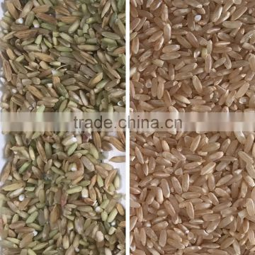 High Quality And High Efficiency Rice Color Sorter/White Rice Grader/Rice Classifying Screen