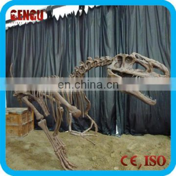 Indoor Playground Dinosaur Skeleton Replicas Craft