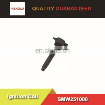 High quality Ignition Coil for Great wall SMW251000