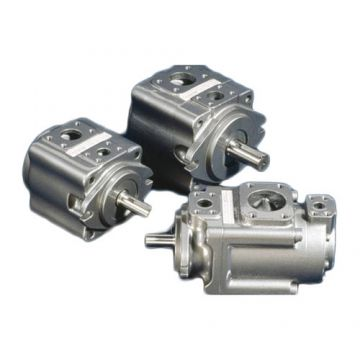 Pgh5-3x/080rr11vu2 63cc 112cc Displacement Rexroth Pgh High Pressure Gear Pump Marine