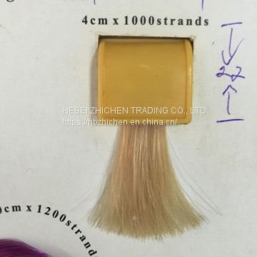 Plastic Detachable Hair Color Chart