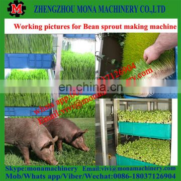 grass growing machine/green fodder making barley breeding room on sale