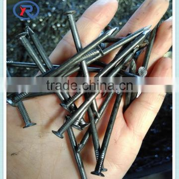 2016 china factory transparent Q195 head iron common nails