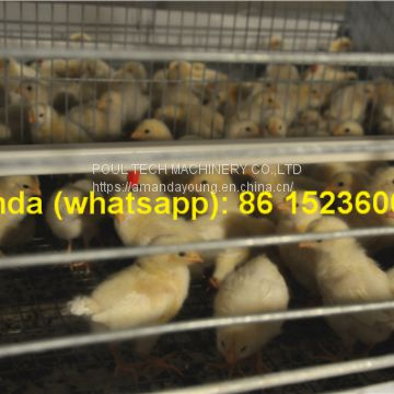 Hot Sale Poultry Farm Equipment - Broiler Cage & Meat Chicken Cage & Chicken Coop in Broiler House & Chicken Shed in Mozambique