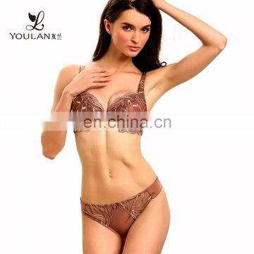 Transparent Lace Underwire Push Up Bra & Brief Sets Hot Sexy Bra Photos