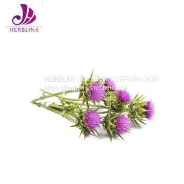 Best Selling Products High Quality Milk Thistle Extract