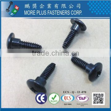 Made in Taiwan Zinc Black CR6+ Trilobuar thread without Bumper Square Phil Combo Carbon Steel C1022 Screws