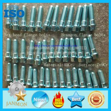 Hexagon flange bolts,Hex head flange bolts,High tensile hex bolts,High strength hex bolts,Zinc plated bolts,Galvanized bolts, Hexagon flange bolt,Hex head flange bolt,High tensile hex bolt,High strength hex bolt,Zinc plated bolt,Zinc galvanized hex bolts,