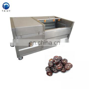 potato cleaner root vegetable washing machine automatic fish cleaning machine