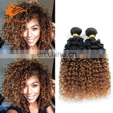 Wholesale 7A Grade Quality Ombre Brown Color Virgin Brazilian Human Hair Curly Double Drawn Weft Hair Bundle