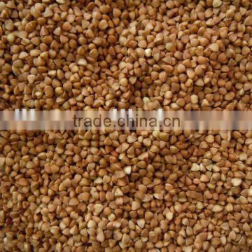 Roasted Buckwheat Kernel New Crop 2011
