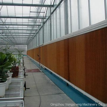 Greenhouse Cooling Pad System