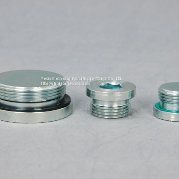 BSP MALE O-RING SEAL  INTERNAL HEX PLUG
