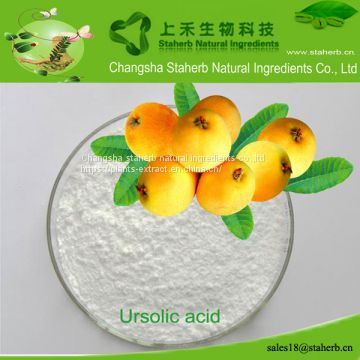 Maslini acid/Loquat leaf extract/4373-41-5/Lower blood pressure