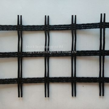 High strength PET geogrid /civil mesh
