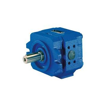 Qt5133-125-12.5f Leather Machinery Rotary Sumitomo Gear Pump