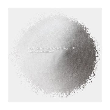 Sodium alginate(Food additive; High quality purity)