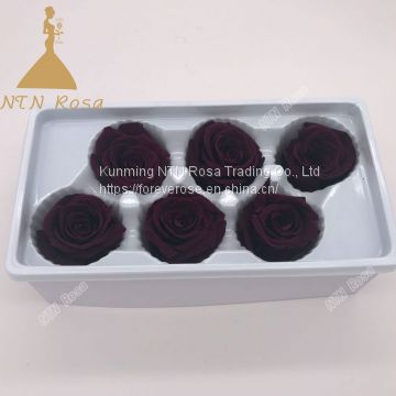 Dried Flowers, High quality Preserved Roses Preserved Roses as gifts