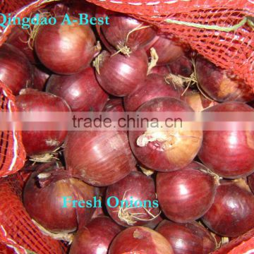 2014 New crop fresh onions