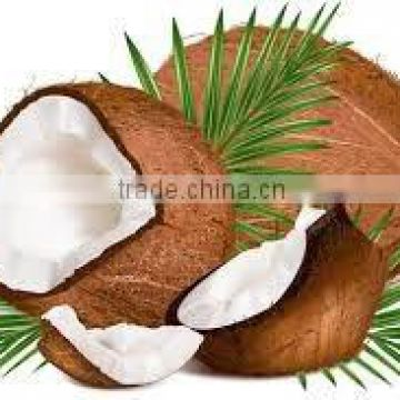 VIRGIN COCONUT OIL PACKING WITH COCONUTSHELL AND ROPE 60 ML