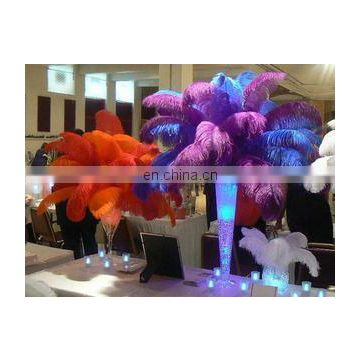 top quality fast delivery time colorful ostrich feather