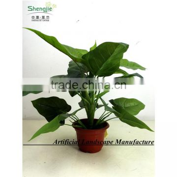 SAS201603 China Supplier Artificial Greenery Plant,Indoor Fake Ornamental Foliage Plant