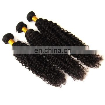 8A virgin hair kinky curly brazilian hair extensions hair