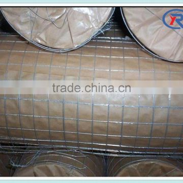 trade assurance Galvanized Iron Welded Wire Netting mesh