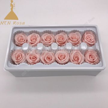 High quality Preserved Roses Preserved Roses as gifts