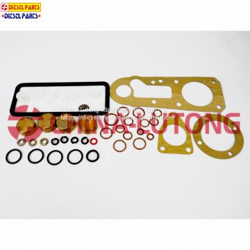 bosch ve pump rebuild kit-ISUZU injection pump repair kit 2 417 010 008 in ve injection pump