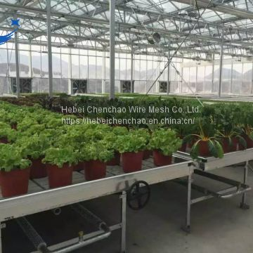 Hebei chenchao rolling benches for commercial greenhouse benches