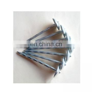 cheap low price galvanized roofing nails