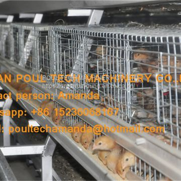 Iran Poultry Farming A Frame Automatic Small Chicken Cage & Pullet Coop with Nipple Drinker & Drop Cup in Chicken Shed