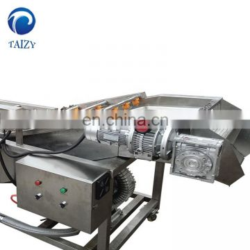 Taizy Bubble type fruit vegetable washing machine/fruit washing machine