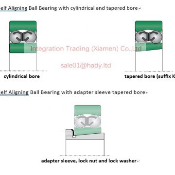 1208 1308 2208 2RS 2208 2308 2RS 2308 1209 1309 2209 2RS 2209 2309 2RS 2309  Self-aligning Ball Bearings