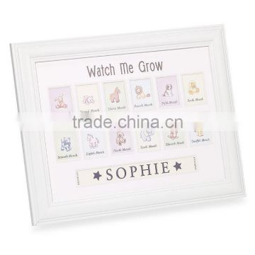 White Funia Frame Photo For Decoration