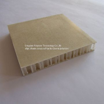light weight stiffness FRP polypropylene honeycomb  sandwich panel