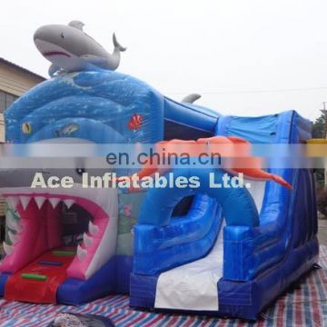 Hottest shark and fish theme combo with slide