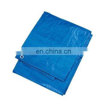 blue 12 x 18-Foot Tarpaulin Large