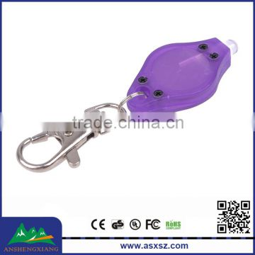 Cheap Wholesale Customized Promotion LED Flashing Keychain For Pet Losting
