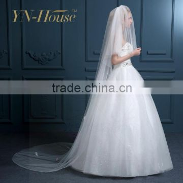 Beautiful Lace Appliqued Trim Floor Length 3 Meter Long Wedding Bridal Veil