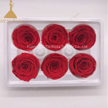 A grade fresh cut roses preserved flower from ecuador wholesale longlasting flower