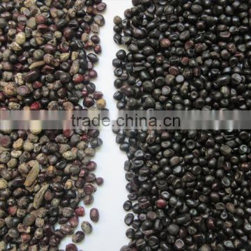 High quality Seeds color sorter with CE/SONCAP certification