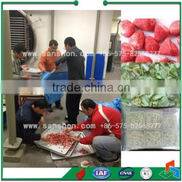 Hotsell Freeze Dried Strawberry Powder Strawberry Lyophilizer