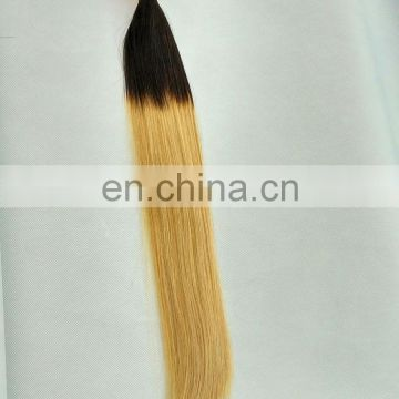 Alibaba golden supplier wholesale High Quality Products Tangle free Best Colored 1b 27 ombre hair weave